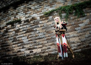 paladin cosplay elfe de sang set t2 wow2